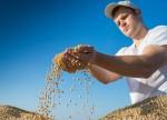 USDA eleva previsão para safra de soja 2018/19 do Brasil a 120,5 mi t