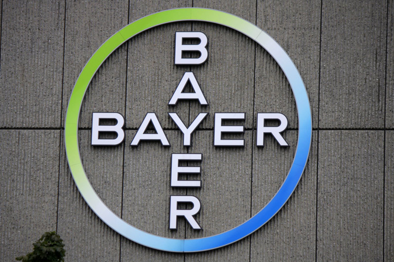 Update 1 Bayer In Exclusive Talks To Sell Vegetable Seeds Business