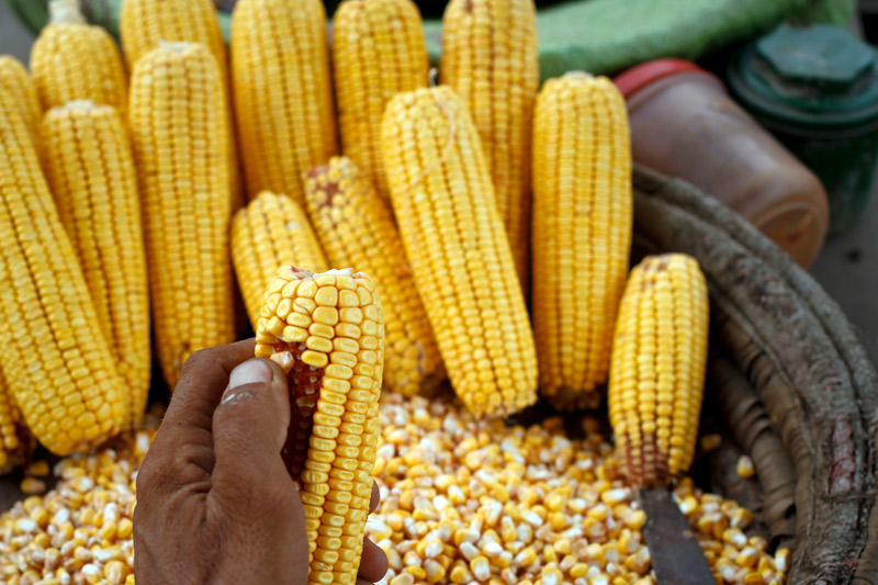 U.S. Sanctions Strand Iranian Ships Ferrying Corn From Brazil