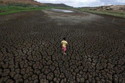 ESPECIAL-Nordeste corre contra o tempo para salvar cidades assoladas pela seca