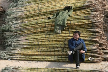 China slaps import duties on sugar; experts question impact
