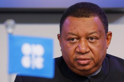 OPEC Sec-Gen sees growing consensus on duration of oil cut extension