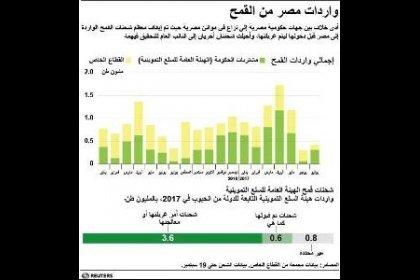 معركة فحص الشحنات تهدد إمدادات القمح في مصر