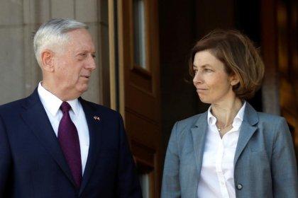 فرنسا: يجب أن تكثف أمريكا دعمها لمكافحة المتشددين بغرب أفريقيا