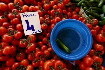 Россия согласовала поставку 50.000 тонн томатов из Турции с 1 ноября -- Новак