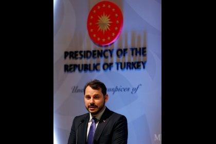 وزير الطاقة: تركيا تتطلع لتنويع إمدادات الغاز