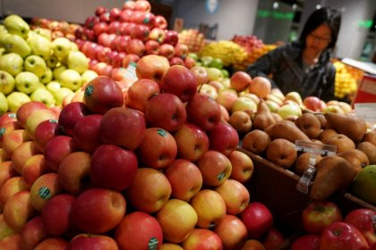Cheaper services weigh on U.S. wholesale prices; jobless claims up