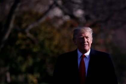 Trump says will meet with Putin 'in the not too distant future'