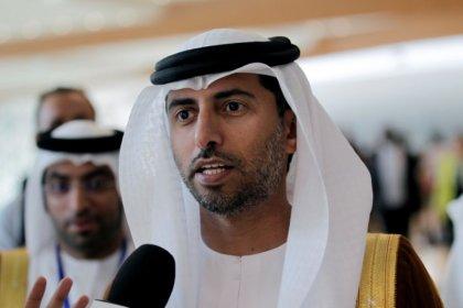 وزير الطاقة الإماراتي: إنتاج النفط الصخري يعود بوتيرة أسرع من المتوقع