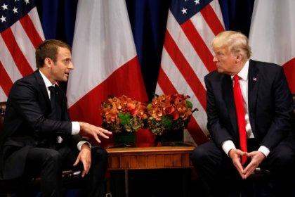 Macron va offrir une bouture de chêne du Bois Belleau à Trump