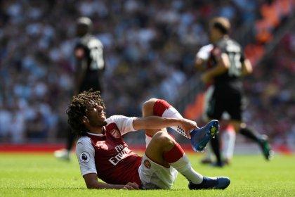 Arsenal's Elneny suffers ankle ligament damage