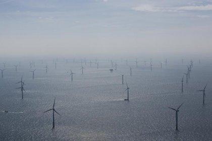 Regierung senkt Höchstwerte für Ökostrom-Förderung