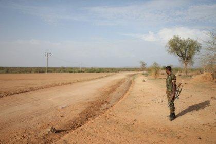 Eritrea welcomes Ethiopia PM's olive branch, raising hopes of breakthrough