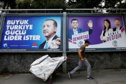 Turks abroad vote at record level in elections