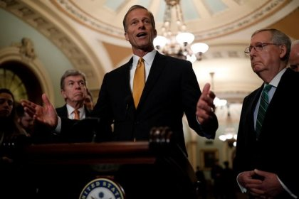 Leading Republican senator says will 'take a look' at immigration legislation