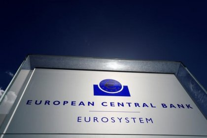 ECB's bad debt rules will be flexible and should come soon - Bundesbank