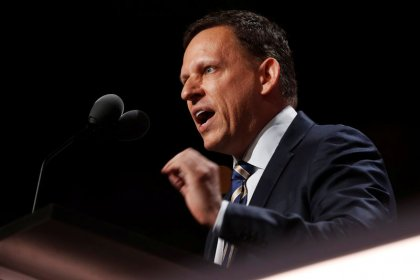 Waiting for Peter Thiel: big tech directors miss shareholder meetings