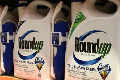 Monsanto Roundup appeal has uphill climb on 'junk science' grounds: legal experts