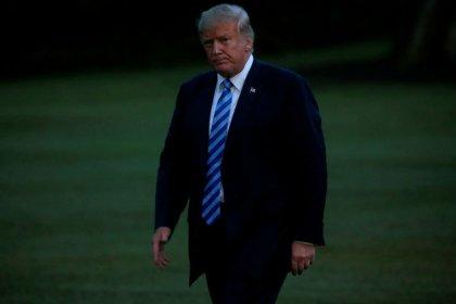 Trump hails U.S. dollar strength in tweet