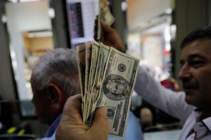 Trotz Erdogan-Aufruf - Türken horten Dollar und andere Fremdwährungen