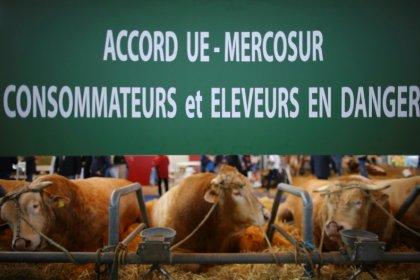 Crise na Argentina dificulta acordo Mercosul/UE e inviabiliza livre comércio de veículos, diz fonte