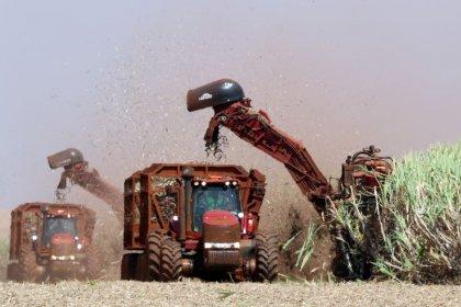 Bunge investe R$7 mi em centro para manutenção de colhedoras de cana no Brasil