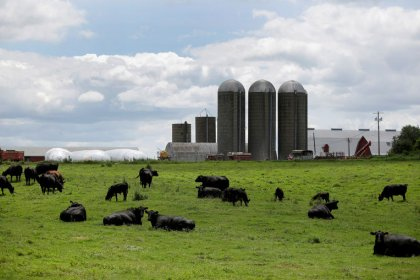Farm, automaker groups press U.S. officials to push for more EU access