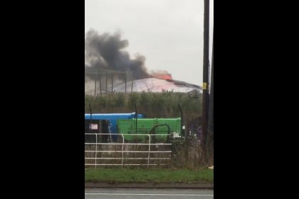 Animals safe as large blaze breaks out at British zoo