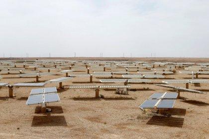 وزير: السعودية تبدأ العمل مع سوفت بنك على خطة طاقة شمسية حجمها 200 جيجاوات