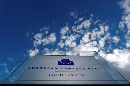 Weak euro zone bank profits could take fresh hit: ECB