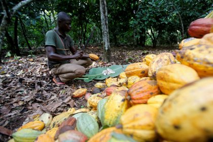 Chocolate makers face ethical branding dilemma