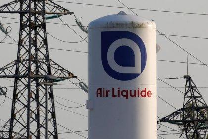 Exclusive: Air Liquide puts German disinfectants maker Schuelke on the block - sources