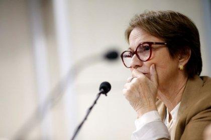 MP prevê regularização de terras somente até maio de 2014