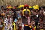 Tribos brasileiras apoiam manifesto para salvar a Amazônia de Bolsonaro