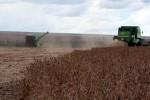 Colheita de soja 2019/20 do Brasil vai a 1,8% da área, puxada por MT, diz AgRural