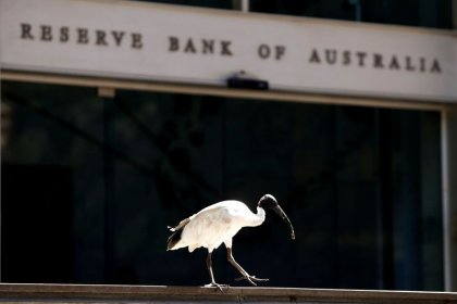 Central banks flash the cash as market panic drives liquidity squeeze