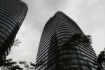 XP anuncia R$100 mi para fomentar fundos dedicados a ESG