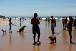 England adds Portugal to coronavirus quarantine list