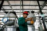 ECB e Paraguai assinam contrato de Zona Franca para usina de biocombustível avançado
