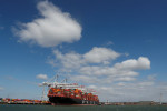 Global service trade decline shows signs of bottoming out: WTO
