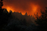 حريق غابات يجبر السلطات على إخلاء مستشفى ومئات المنازل في شمال ولاية كاليفورنيا الأمريكية