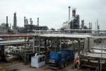 وكالة الطاقة: تسارع الإغلاقات الدائمة لمصافي التكرير بفعل الجائحة