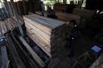Grupo de empresas e organizações aponta governo como maior responsável por ilegalidades no mercado de madeira