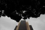 Superávit em transações correntes do Brasil alcança US$1,473 bi em outubro
