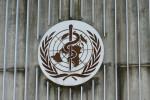 Oms considera ipotesi certificati vaccinazione elettronici per viaggiare