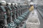 米、新疆の綿・トマト製品の禁輸強化 中国の強制労働批判