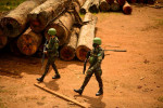 Special Report: Brazil's military fails in key mission - halting Amazon deforestation