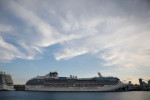 Cruise industry executives, health experts meet to discuss restart plans
