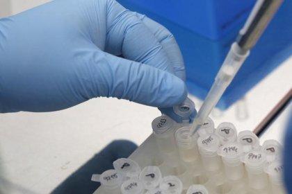 Zika vaccine shows promise in mice, lifting maker Inovio