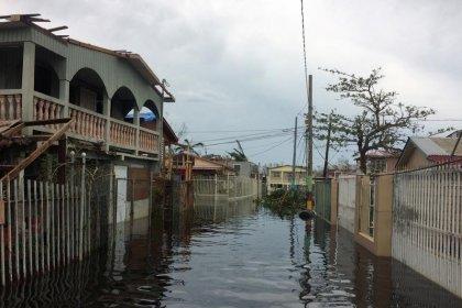 مقتل 25 على الأقل بعد اجتياح الإعصار ماريا لجزر الكاريبي